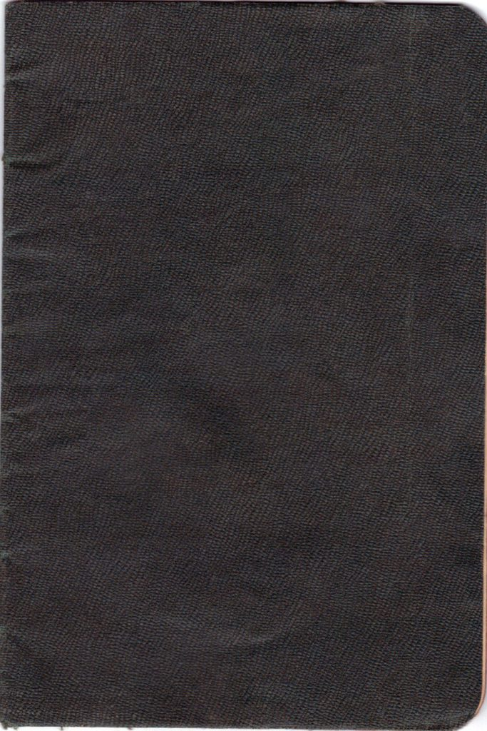 Polya's Russian Passport Front Cover