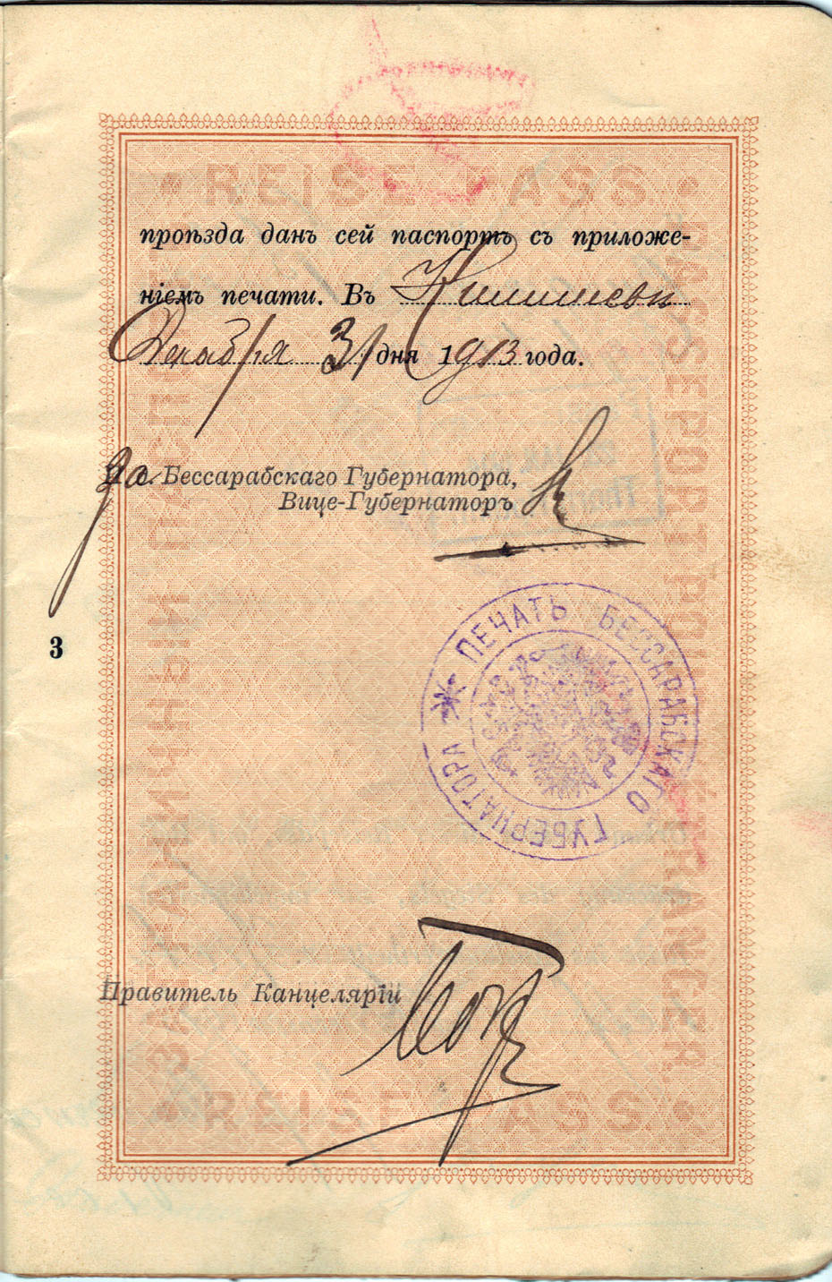 Polya's Russian Passport p03