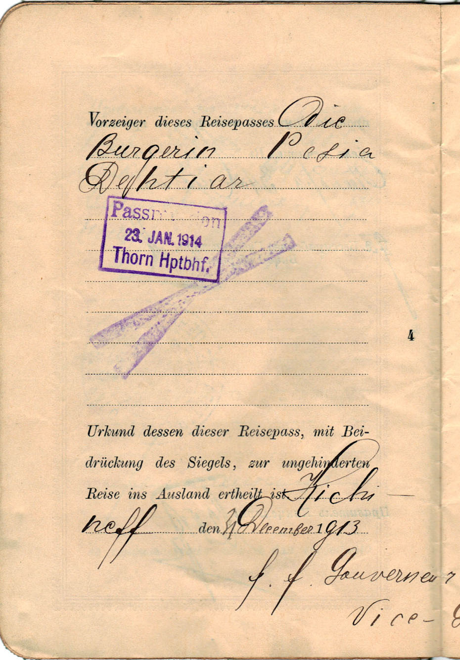 Polya's Russian Passport p04