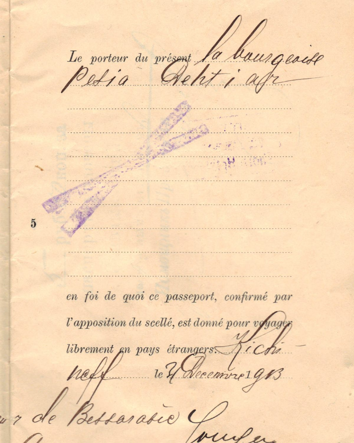 Polya's Russian Passport p05
