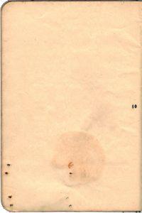 Polya's Russian Passport p10