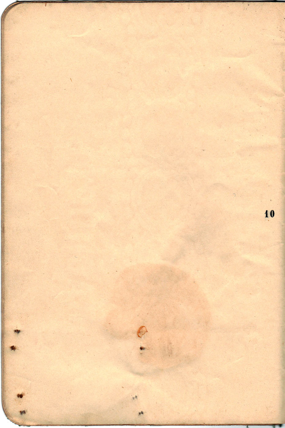 Polya's Russian Passport p10